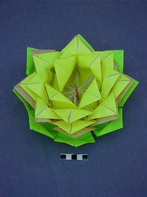 Votive paper lotus flower