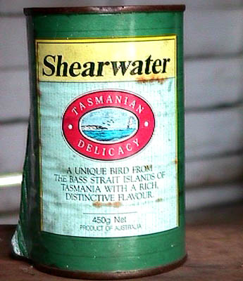 Shearwater can