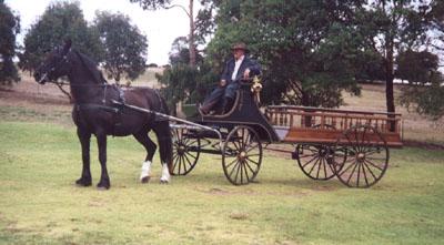 Horse drawn open hearse