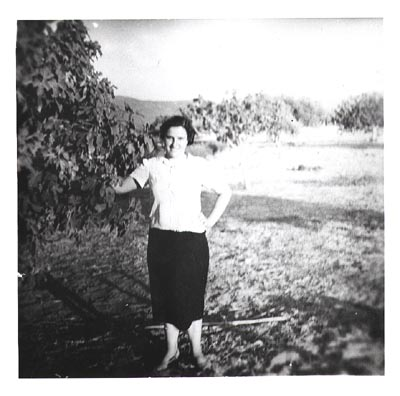 Maria Alexakis in the family olive grove, Greece, mid 1950's