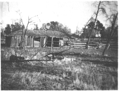 The chaff shed and cow yard